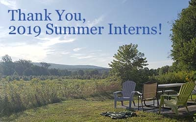 Thank You, 2019 Summer Interns!