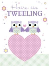 Tweeling felicitatiekaart