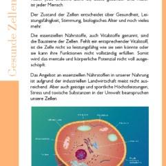 Gesunde Zellen Top 1 fürs Leben
