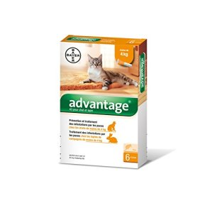 Advantage 40 Chat/Lapin 0-4 kg 6 pipettes antiparasitaires