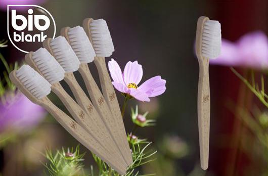 brosse-dents-bois-ecologique-vegan-vannes-bretagne
