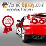 banner-square-vernicispray-it
