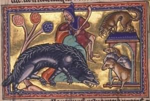 Een wolf besluipt de schapen (bestiarium van Aberdeen, twaalfde eeuw)