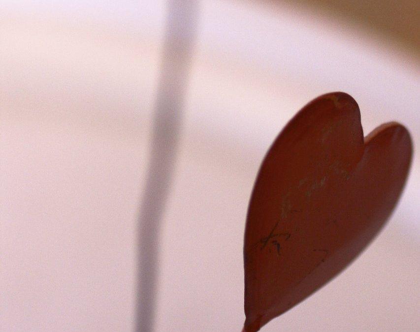 En el dia de los Enamorados
