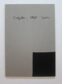Cogito Ergo Sum by Rosemarie Trockel