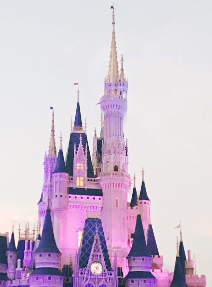 Disney World…Again!
