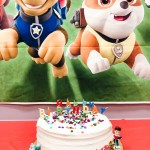 Lincoln's Paw Patrol Fourth Birthday Party
