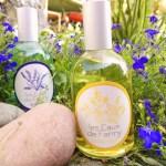 ©Véronique Milioni, graphisme, création des étiquettes Cadentia, parfumeur, illustration fait-mai, dessin traditionnel