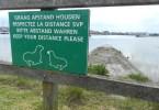 Natuurgebied IJzermonding