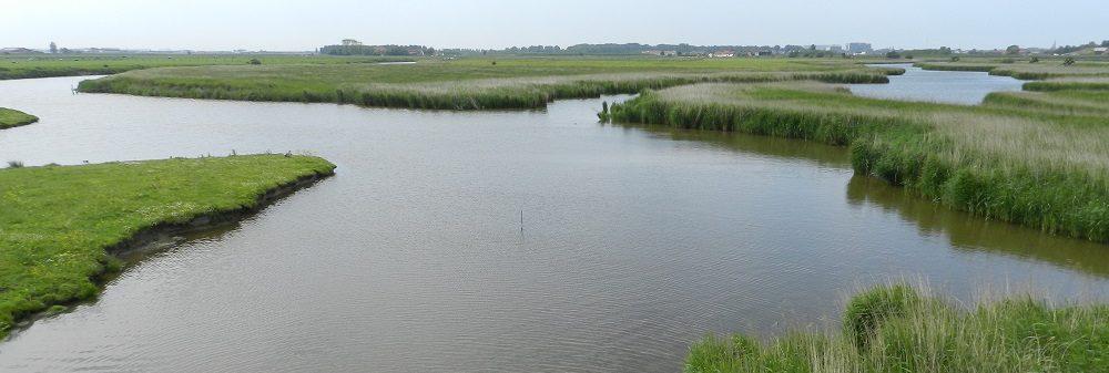 De Oostendse Kreken - zicht vanop Groene 62