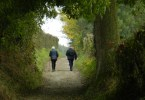 Altenbroekwandeling - holle weg in Noorbeek