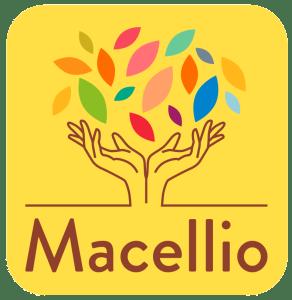 Verre Olive - Maintenant à Macellio