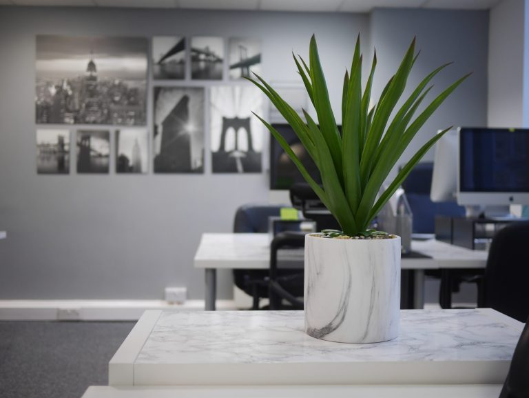 Office for marketing agency