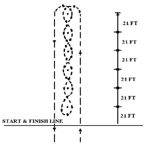 Pole Bending course