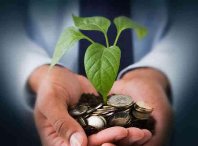 O que é capital social