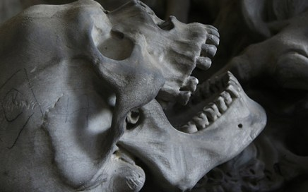 Human bones have become weaker due to declining mobility and rise of agriculture