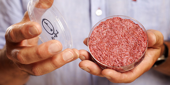 Lab-grown meat, The future of food