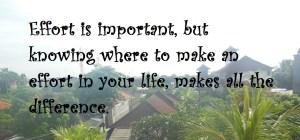 Effort in Life