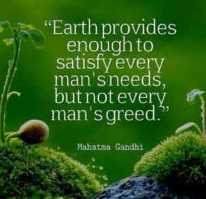 Need vs Greed