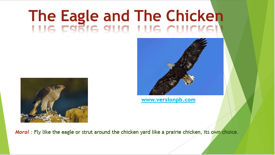 The Eagle and The Chicken