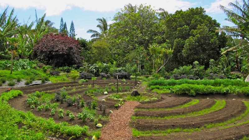 Définition de la permaculture.