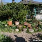 vivre en ce jardin