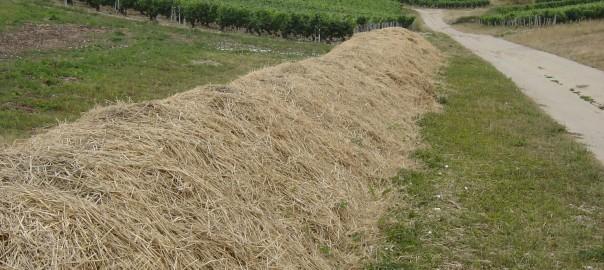 La durée idéale de compostage en Biodynamie?