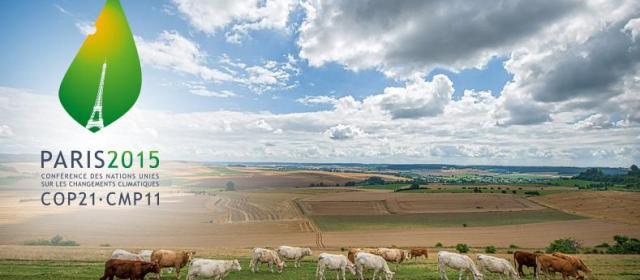 L'accord final reconnaît la place de l'agriculture et de la forêt