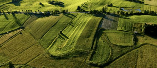 Tour d'horizon des indicateurs de l'état Organique et Biologique des sols