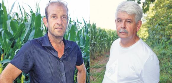 Matières végétales et vie biologique des sols un article Agriculteur Provençal
