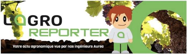 logo_agroreporter-suite