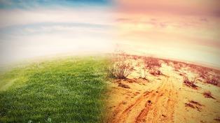 El Gobierno creará un observatorio para dar respuesta rápida a emergencias ambientales