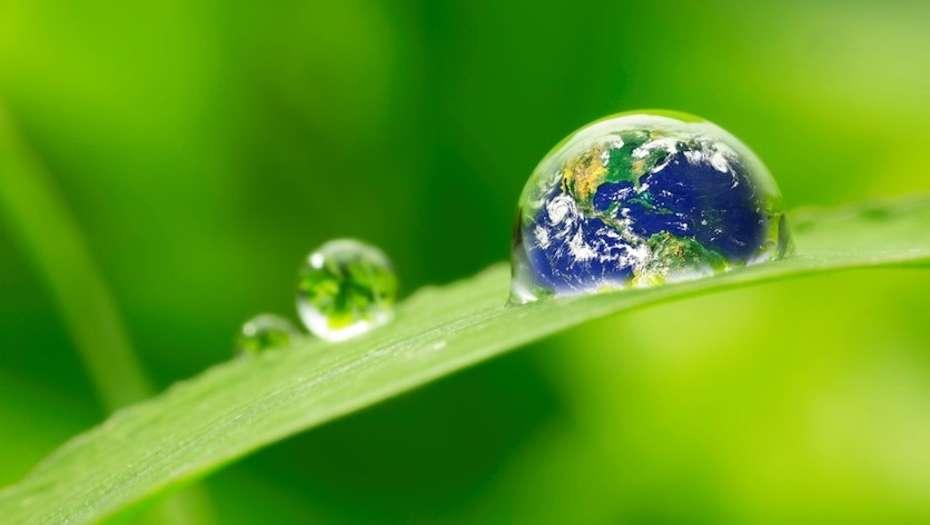 Día Mundial del Agua, ¿en verdad estamos conscientes de su importancia?