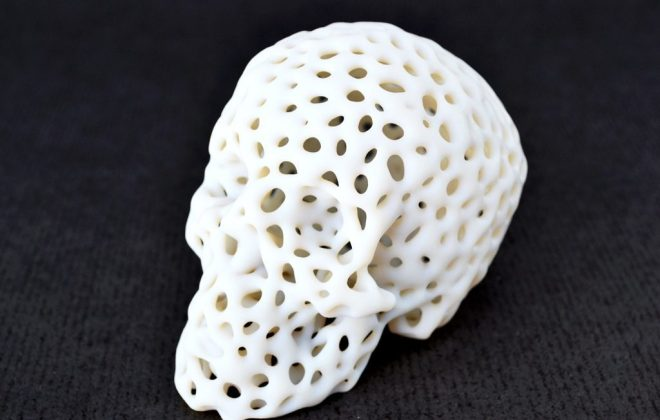 Algorithm Generated Skull