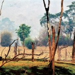 Trees by Raghu Rai at Art Alive Gallery, New Delhi
