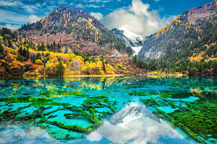 Five Flower Lake in Jiuzhaigou Valley National Park