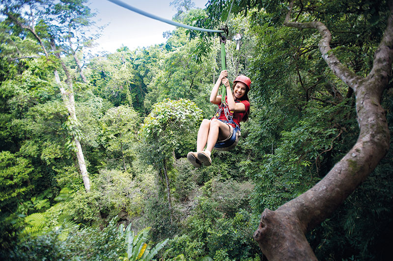 Cairns, Australia, jungle surfing, queensland, travel, adventure, great barrier reef