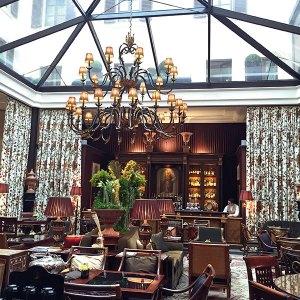 The cosy atrium lounge