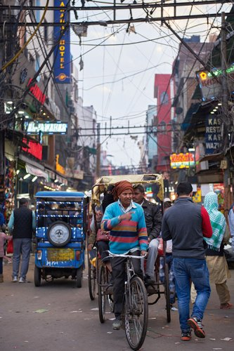 The Bustle of Daily Life in Delhi 6