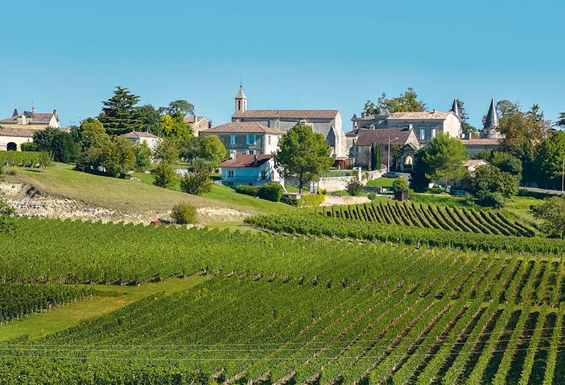 The vineyards of Saint-Emilion, France