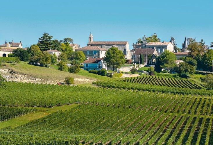 The vineyards of Saint-Emilion