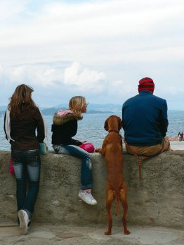Saint-Tropez: as far as the eye can see