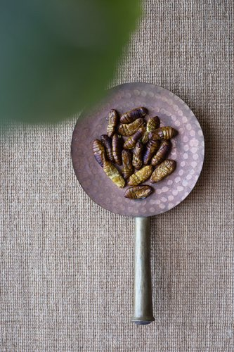 Silkworm pupae ready for eating