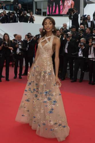 Jourdan Dunn in Elie Saab