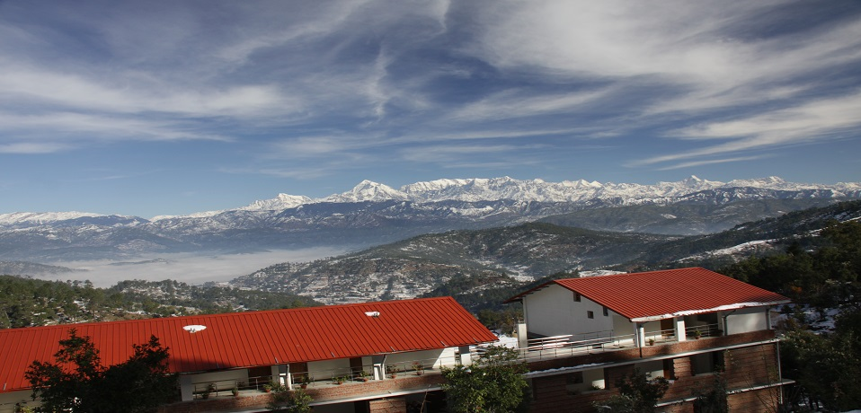 The Buransh in Kausani