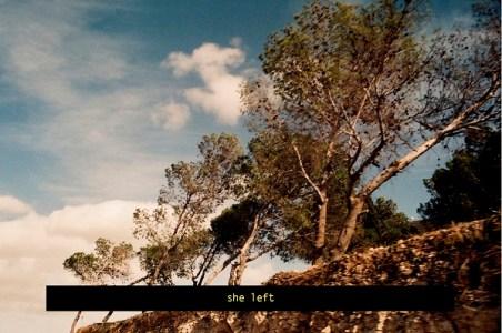 On Love and Other Landscapes, Yazan Khalili