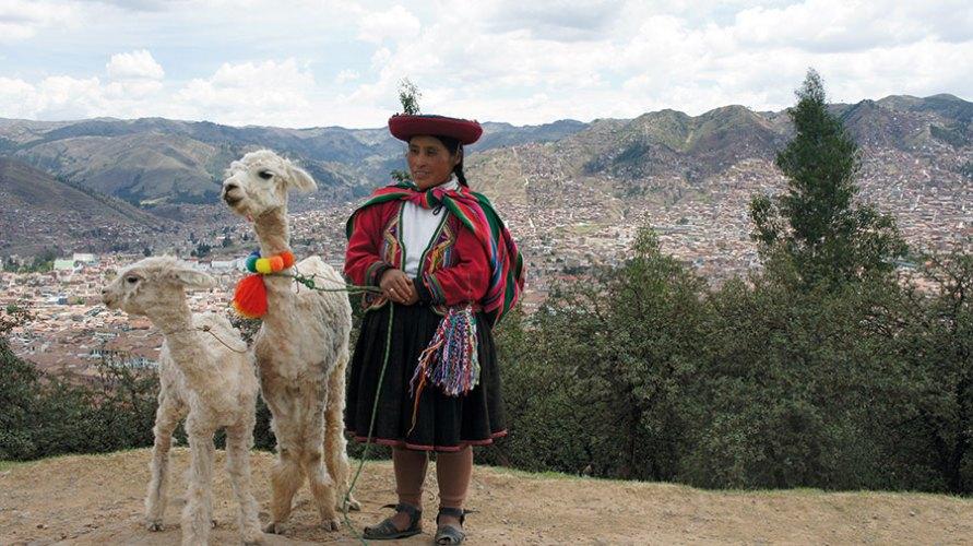 Andean woman with Llamas