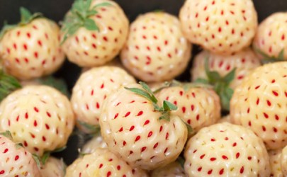 2. Pineberries