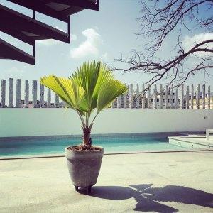 Poolside (La Villa)