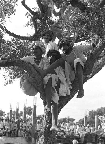 Pushkar, 1978